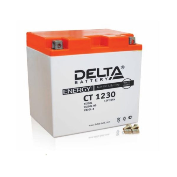 Delta CT 1230 (12V / 30Ah), Аккумуляторная батарея